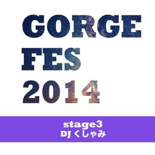 DJ くしゃみ - Gorge mix 2014 -GORGE FES 2014