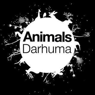 Daruma on FM Brussels Radio show for Animals Club