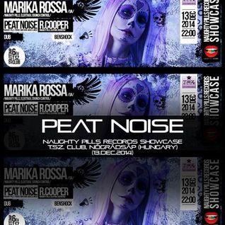 Peat Noise @ NAUGHTY PILLS RECORDS Showcase, T.SZ. Club, Nógrádsáp (Hungary) (13.DEC.2014)