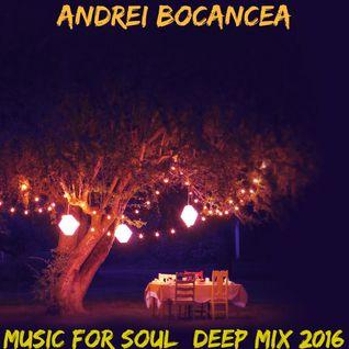 Andrei Bocancea - Music for Soul (Deep Mix 2016)