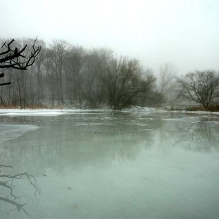Music for Dogs and Icy Ponds