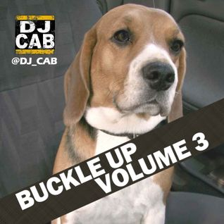 Buckle Up! Vol. 3 (Electro/House/Top40 Remixes)