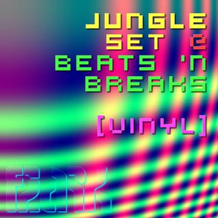 Flark Jungle Set @ Beats 'n Breaks  [VINYL]