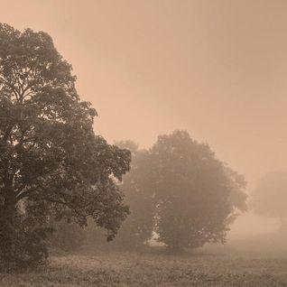 redraven - autumn moods