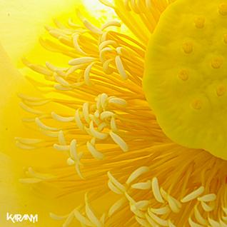 Karanyi - Open (Mixtape promo March 2013)