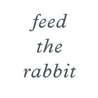 feed the rabbit