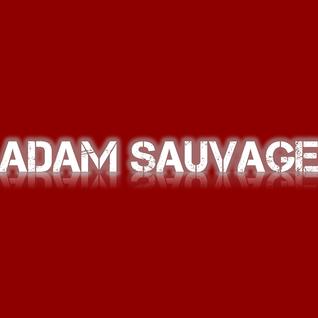Laidback Luke – Till tonight (Adam Sauvage Remix)
