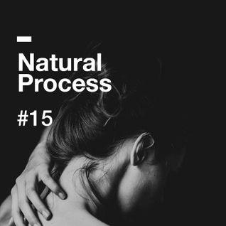 Natural Process #15