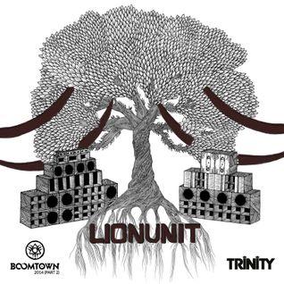 Lion Unit @ Boom Town Fair 2014 - Tangled Roots (Part 2)