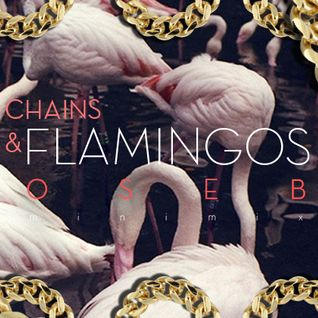 CHAINS & FLAMINGOS