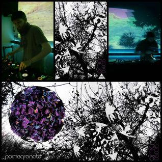 Pomegranate #16 Live @ Oma 05-03-15
