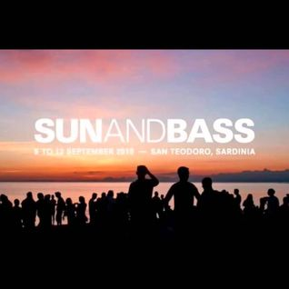 BAILEY & J J FROST with MC MOOSE LIVE at SUN & BASS 2016