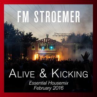 FM STROEMER - Alive & Kicking Essential Housemix February 2016 | www.fmstroemer.de