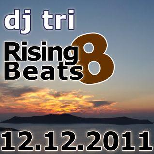 Dj tri - Rising Beats 8 - 12.12.2011