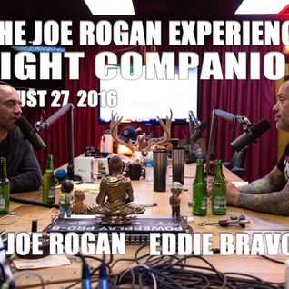 Fight Companion - August 27, 2016