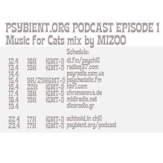 Psybient Org Podcast 00 Introduction