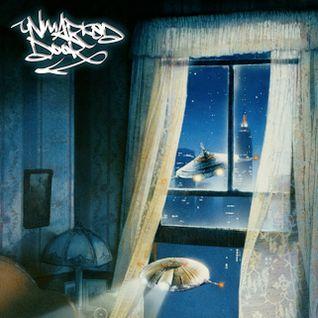 Unmarked Door Invader FM 57