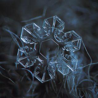 Afro - Snowflake Curve [dru 050]