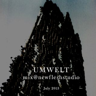 Umwelt - Mix @ NF Studio (July 2013)
