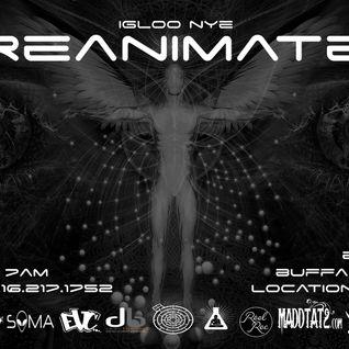 Paul Kuenzi - Live @ Igloo NYE Reanimate