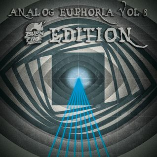 Analog Euphoria Vol 8; Burn The Fire Edition