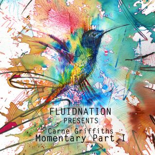 Fluidnation presents Carne Griffiths' Momentary :: Part 1