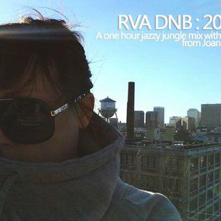 RVA DNB 2013