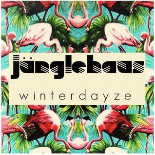 Winterdayze