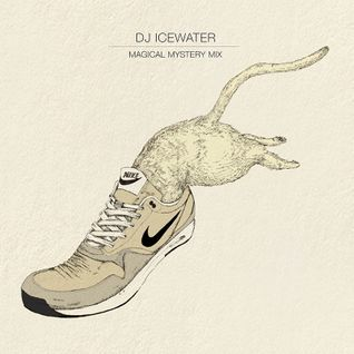 DJ Icewater : Magical mystery mix (guest : Shing02)