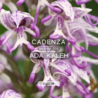Cadenza Podcast | 202 - Ada Kaleh (Cycle)