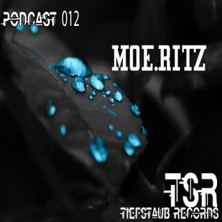 Moe.ritz - year-end Podcast --TechHouse