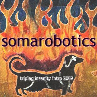 Somarobotics Live at Insanity Intro