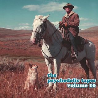 The Psychedelic Tapes - Volume 10