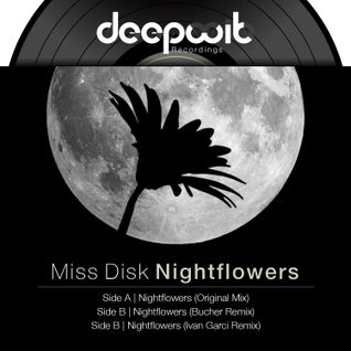 Miss Disk - DeepWit recordings Promo session