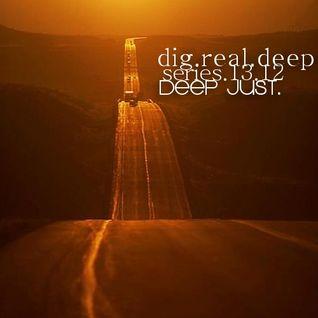 DigRealDeep_series_1312