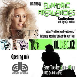 euPHoRiC FReQueNCieS 11DEC2012 - digit@l buddha deep prog opening mix