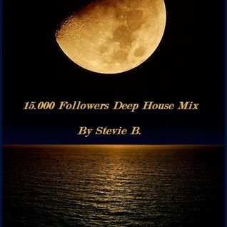 15.000 Follower Ultra Mix By Stevbie B.