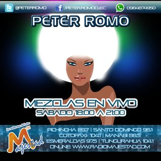 Peter ROMO -> Hits Junio 2014