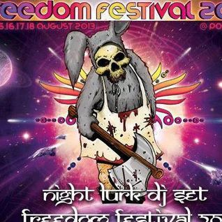 Night Lurk Set @  Freedom Festival 2013