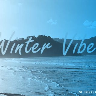 Dj Ment - Winter Vibes - Nu Disco Mix vol.2