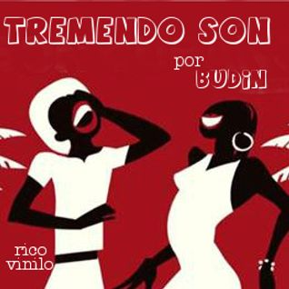 Tremendo Son (only vinyl)