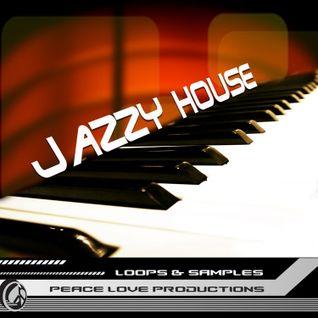 DJ DERYA MERSINOGLU JAZZY HOUSE SET SUMMER 2011 (2)
