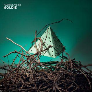 Fabric Live 58 - Goldie (Radio Mix promo)
