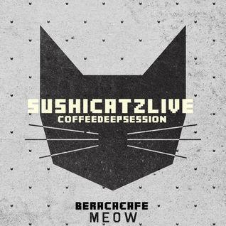 SUSHICATZ LIVE @ COFFEE DEEP SESSION VOL 1 (BERACA CAFE TEGUCIGALPA)