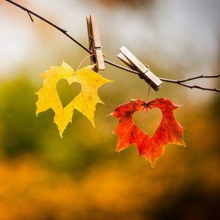 Jetson - Autumn 2014 Promo