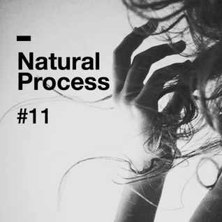 Natural Process #11