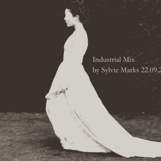 Industrial Mix by Sylvie Marks 22.09.2016