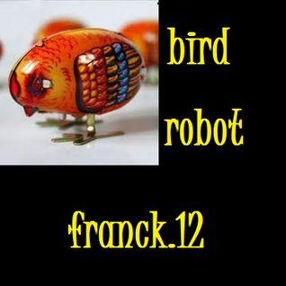 BIRD ROBOT