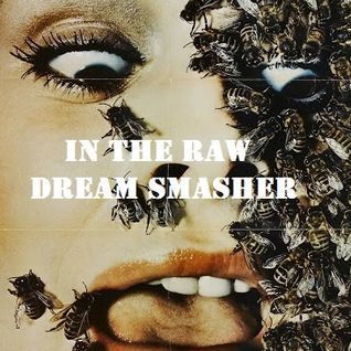 In The Raw - Dream Smasher