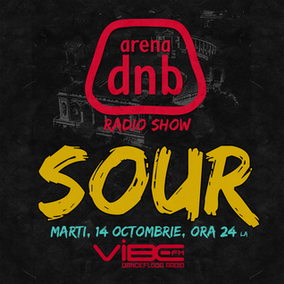 Arena dnb radio show - vibe fm - mixed by SOUR - October 14th 2014